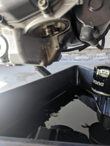 Ducati Monster 696 Oil FIlter Location